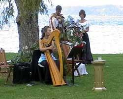 Natarani & Sasha's Druidic Huia Wedding